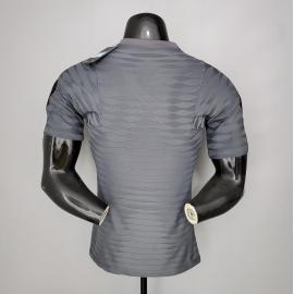 Camiseta Paris Saint-germain Entrenamiento Gris 2020-2021