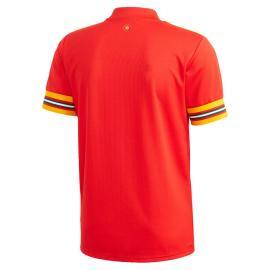 Camiseta Gales Primera Equipación 2020-2021 Niño