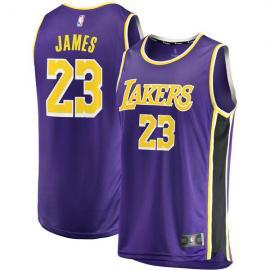 Camiseta Baloncesto Lebron James 23 Statement Edition Púrpura Los Angeles Lakers Hombre